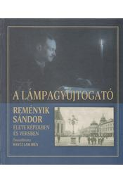 A lámpagyújtogató - Hantz Lám Irén - Régikönyvek