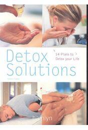 Detox Solutions - Helen Foster - Régikönyvek