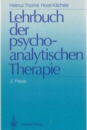 Lehrbuch der psychoanalytischen Therapie 2. - Praxis - Helmut Thomä, Horst Kächele - Régikönyvek