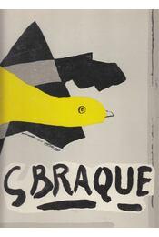 Georges Braque: His Graphic Work - Hofmann, Werner - Régikönyvek