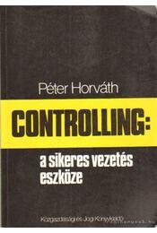 Controlling: a sikeres vezetés eszköze - Horváth Péter - Régikönyvek