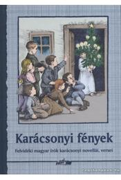 Karácsonyi fények - Hunyadi Csaba Zsolt - Régikönyvek