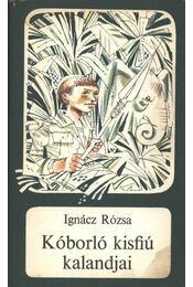 Kóborló kisfiú kalandjai - Ignácz Rózsa - Régikönyvek