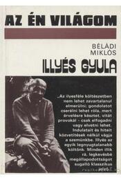 Illyés Gyula - Béládi Miklós - Régikönyvek