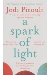 A Spark of Light - Jodi Picoult - Régikönyvek