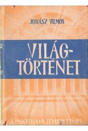 Világtörténet - Juhász Vilmos - Régikönyvek