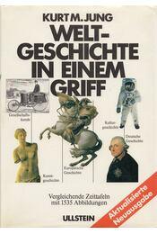 Weltgeschichte in einem Griff - Jung, Kurt M. - Régikönyvek