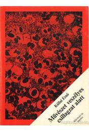 Művészet veszélyes csillagzat alatt - Kállai Ernő - Régikönyvek