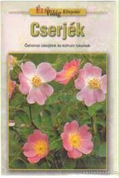 Cserjék - Fráter Erzsébet - Régikönyvek