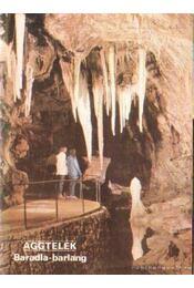 Aggtelek - Baradla-barlang - Hazslinszky Tamás, Székely Kinga - Régikönyvek