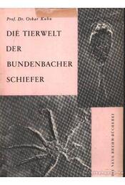 Die Tierwelt der Bundenbacher Schiefer - Kuhn, Oskar Dr. - Régikönyvek