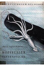 Kopfüsser Tintenfische (A fejlábú tintahal) - Jaeckel, Siegfried H. - Régikönyvek