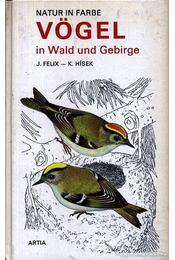Vögel in Wald und Gebirge - Felix, Jiri, Hísek, K. - Régikönyvek