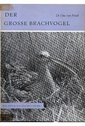 Der Grosse Brachvogel (A nagy póling) - Frisch Dr., Otto von - Régikönyvek