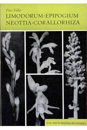Limodorum - Epipogium - Neottia - Corallorhiza (1967) - Füller, Fritz - Régikönyvek