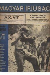 Magyar Ifjúság 1973. augusztus 31. szám - Szabó János - Régikönyvek