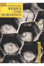 Darazsak és lódarazsak (Wespen und hornissen) - Régikönyvek