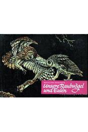 Unsere Raubvögel und Eulen (Ragadozó madaraink és a baglyok) - Makatsch, Wolfgang - Régikönyvek