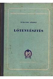 Lótenyésztés - Schandl József - Régikönyvek