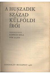 A huszadik század külföldi írói - Köpeczi Béla, Pók Lajos - Régikönyvek