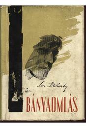 Bányaomlás - Len Doherty - Régikönyvek