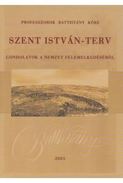 Szent István-terv - Lovas Rezső (szerk.), Náray-Szabó Gábor, Pálinkás József - Régikönyvek