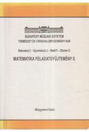 Matematika feladatgyűjtemény II. - Babcsányi István, Gyurmánczi János, Wettl Ferenc, Zibolen Endre - Régikönyvek
