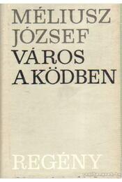 Város a ködben - Méliusz József - Régikönyvek