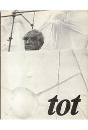 Amerigo Tot - Moldován Tamás - Régikönyvek