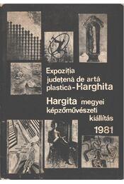 Hargita megyei képzőművészeti kiállítás 1981 - Nicolae Bucur, Gaál András - Régikönyvek