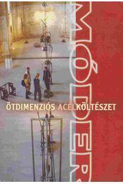 Ötdimenziós acélköltészet-Five Dimensional Steel-Poetry-Fünfdimensionale Stahlpoesie - P. Szabó Ernő - Régikönyvek