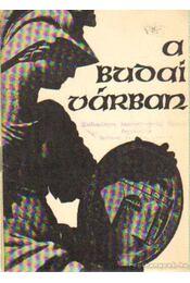 A budai várban - Pákozdi Endre (szerk.) - Régikönyvek