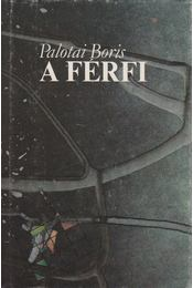A férfi - Palotai Boris - Régikönyvek