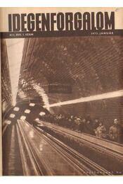 Idegenforgalom 1973. XII. évfolyam (teljes) - Pap Miklós - Régikönyvek