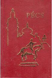 Pécs (mini) - Weöres Sándor, Takáts Gyula, Pál József, Babits Mihály, Kassák Lajos, Kiss Dénes, Fodor András - Régikönyvek