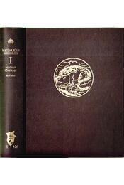 Magyar földrajz I. (reprint) - Prinz Gyula, Cholnoky Jenő - Régikönyvek