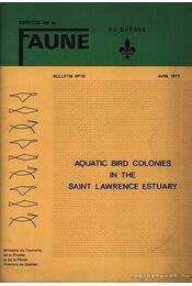 Aquatic Bird Colonies in the Saint Lawrence Estuary (Vízimadár-kolóniák a Szt. Lawrence torkolatban) - Reed, Austin - Régikönyvek
