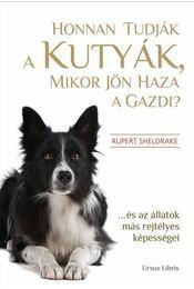 Honnan tudják a kutyák, mikor jön haza a gazdi? - Rupert Sheldrake - Régikönyvek