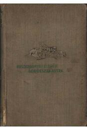 Ágrólszakadtak - Ruszkabányai Elemér - Régikönyvek