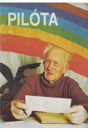 Pilóta 93/1 - Schrank-Ambrus Sándor - Régikönyvek