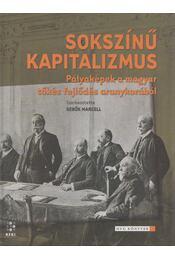 Sokszínű kapitalizmus - Sebők Marcell (szerk.) - Régikönyvek