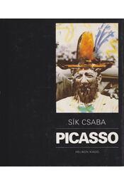 Picasso - Sík Csaba - Régikönyvek