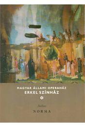 Bellini: Norma - Sólyom György - Régikönyvek