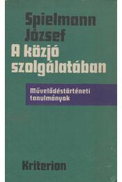 A közjó szolgálatában - Spielmann József - Régikönyvek