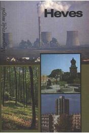 Heves - Szecskó Károly - Régikönyvek
