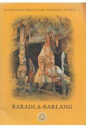 Baradla-barlang - Székely Kinga - Régikönyvek