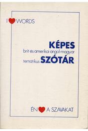 Képes brit és amerikai angol-magyar tematikus szótár - Szendrő Borbála - Régikönyvek