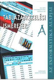 Táblázatkezelési ismeretek A - Kiss Csaba, Krnács András - Régikönyvek
