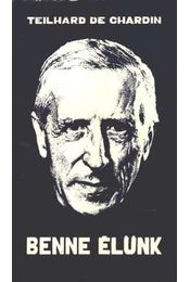 Benne élünk - Teilhard de Chardin, Pierre - Régikönyvek