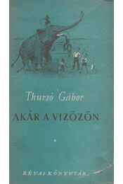 Akár a vízözön - Thurzó Gábor - Régikönyvek
